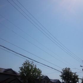 蒸し暑い季節が・・・