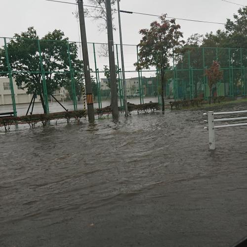 すごい雨でしたね~