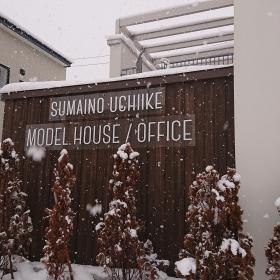 止まない雪