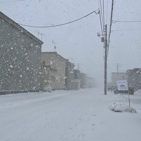 雪、降ってきました~