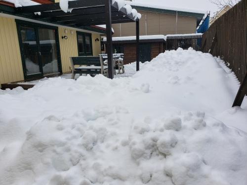 除雪お疲れ様でした。
